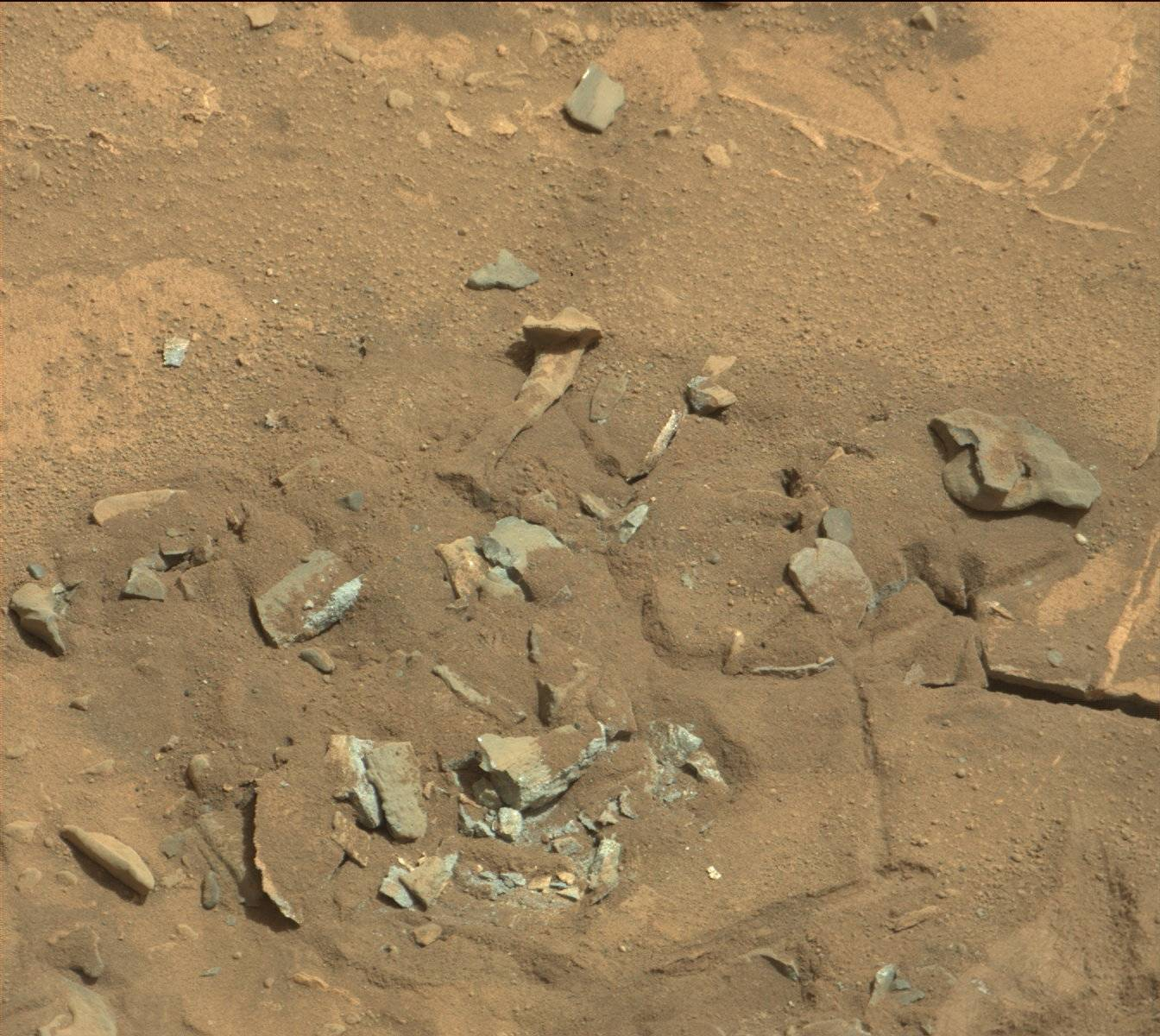 Mars-fossil-thigh-femur-bone-like-Curiosity-rover-mastcam-0719MR0030550060402769E01_DXXX-full